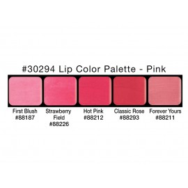 PALETA LIP COLORS: PINK