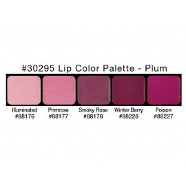 PALETA LIP COLORS: PLUM
